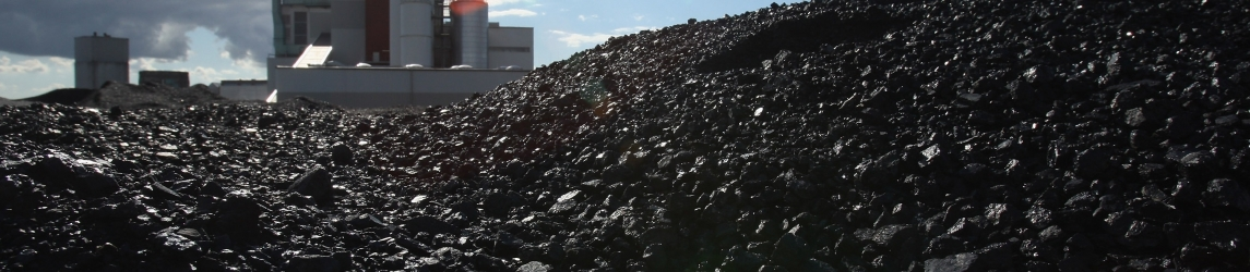 LUODING LOCAL GOVERNMENT REVOKES WASTE INCINERATION PROJECT PERMIT